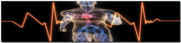 zdravie vitalita small web